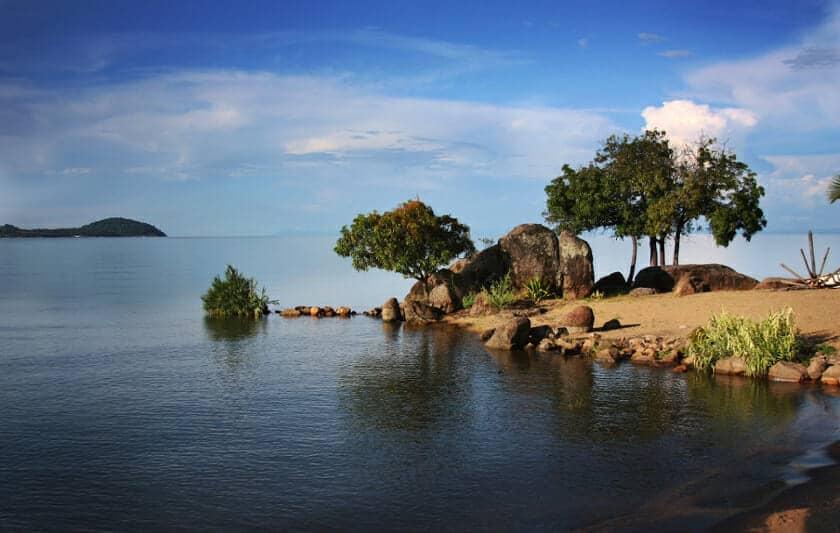 Malawi-Aquarium.com